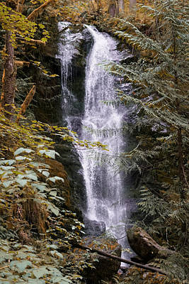 Photograph - Magical Falls Quinault Rain Forest by Michael Hope