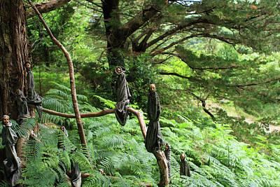 Photograph - Magical Forest by Aidan Moran