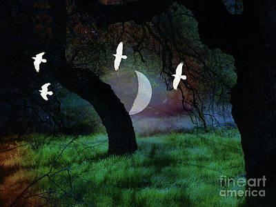 Magical Forest Night Art Print by Robert Ball