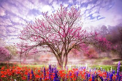 Photograph - Magical Garden by Debra and Dave Vanderlaan