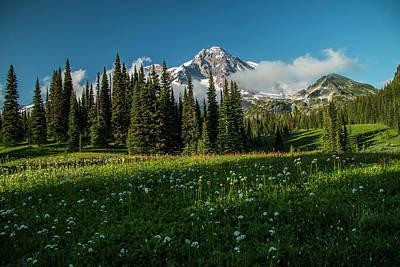 Photograph - Magical Garden by Doug Scrima