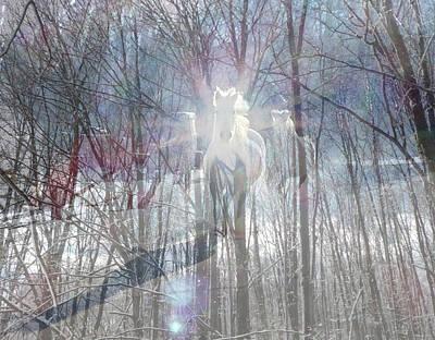 Digital Art - Magical Horses by Patricia Keller