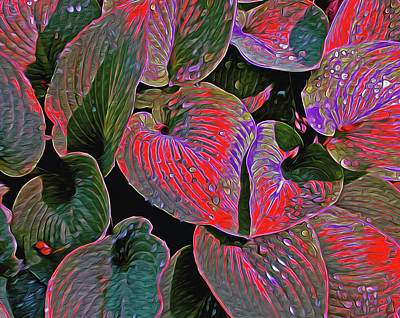 Digital Art - Magical Hostas 5 by Lynda Lehmann