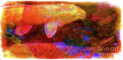 Photograph - Magical Koi by Judi Bagwell