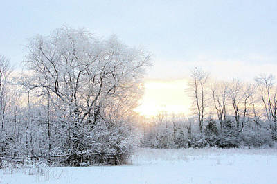 Photograph - Magical March Morning by Valerie Kirkwood
