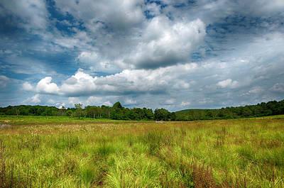 Photograph - Magical Meadow by Lara Ellis