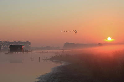 Photograph - Magical Mistery Morning by Rene Pronk