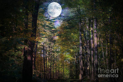 Photograph - Magical Moonlit Forest by Judy Palkimas