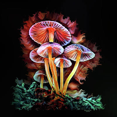 Digital Art - Magical Mushroom by Artful Oasis