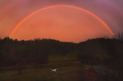 Loping Photograph - Magical Rainbow And Horse by Frederica Georgia
