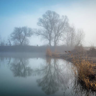 Photograph - Magical Sunday Morning by Davorin Mance