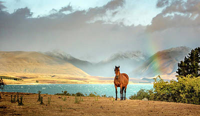 Photograph - Magical Tekapo by Chris Cousins