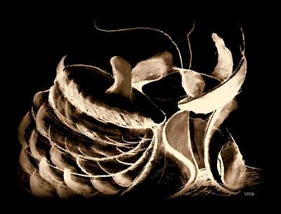 Drawing - Magicmushrooms Sepia by VIVA Anderson