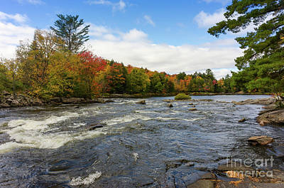 Photograph - Magnetawan River In Fall by Les Palenik