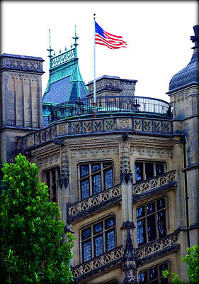 Photograph - Magnificence That Is Biltmore by Susie Weaver