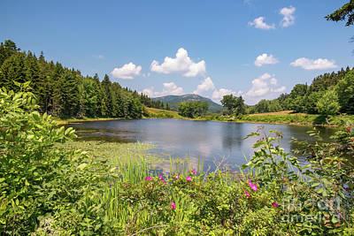 Photograph - Magnificent Little Long Pond by Elizabeth Dow