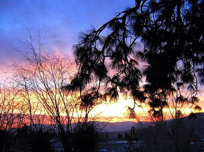 Dazzling Days Photograph - Magnificent Winter Sky by Will Borden