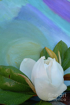 Back To Life Mixed Media - Magnolia 5 by To-Tam Gerwe
