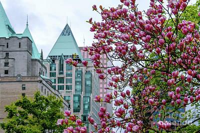 Magnolia At Downtown. Art Print