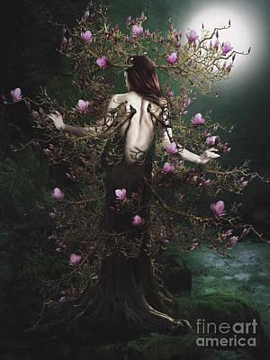 Digital Art - Magnolia by Babette Van den Berg