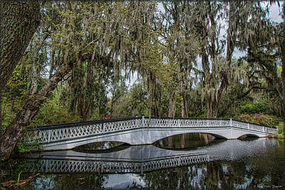 Photograph - Magnolia Bridge by Erika Fawcett