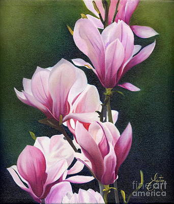 Magnolia Celebration I Art Print