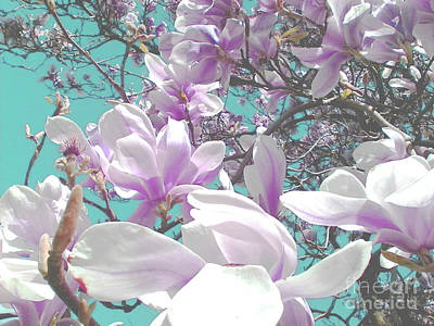 Photograph - Magnolia Charm by Rebecca Harman