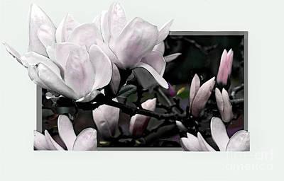 Magnolia Fantasy I Art Print by Madeline Ellis
