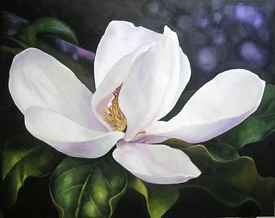 Magnolia Flower Art Print by Chris Hobel