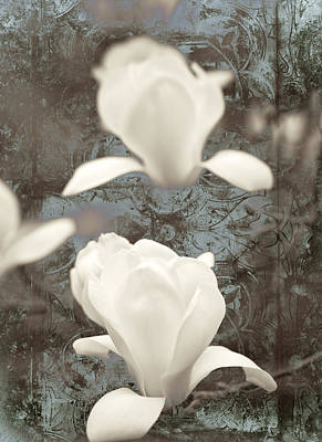 Abstract Flowers Mixed Media - Magnolia by Frank Tschakert