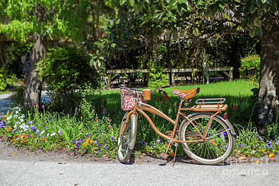 Photograph - Magnolia Gardens Bicycle by Heather Green