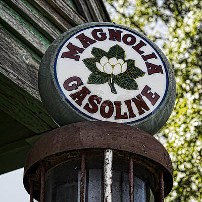 Magnolia Gasoline 2 Art Print
