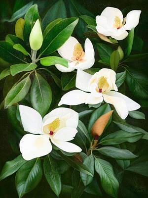 Floral Digital Art Drawing - Magnolia by Ilgvars Rauda