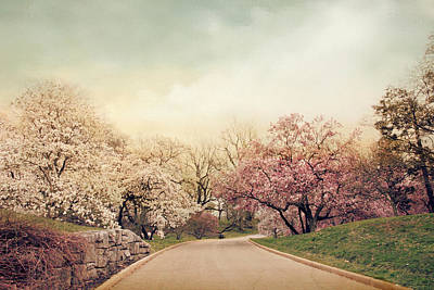 Country Lanes Digital Art - Magnolia Lane by Jessica Jenney
