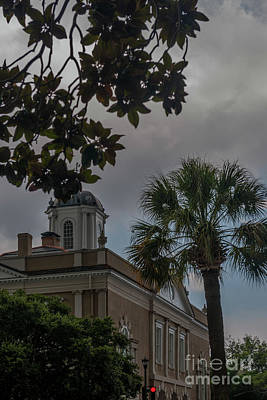 Photograph - Magnolia Leaves Over Charleston South Carolina  by Dale Powell