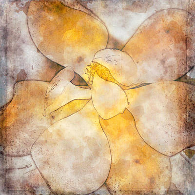 Mixed Media - Magnolia Modern Art by Teresa Wilson