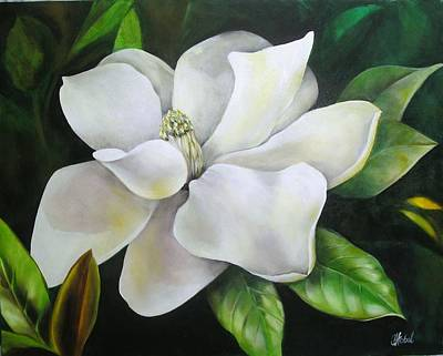 Magnolia Oil Painting Art Print