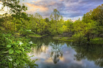 Photograph - Magnolia Overlook by Debra and Dave Vanderlaan