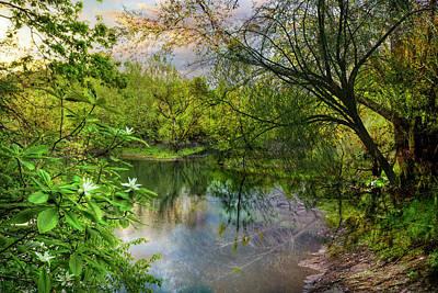 Photograph - Magnolia Overlook In Summer by Debra and Dave Vanderlaan