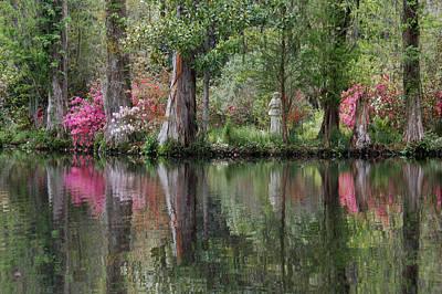 Magnolia Plantation Gardens Series Iv Print by Suzanne Gaff
