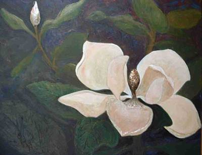 Magnolia Spring Art Print by Win Peterman