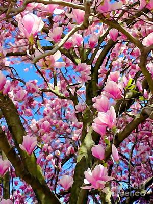 Photograph - Magnolia Tree Beauty #3 by Ed Weidman