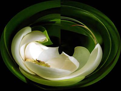 Photograph - Magnolia Twirl by Carolyn Jacob
