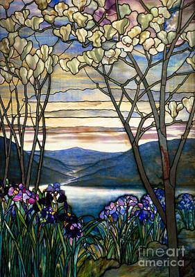 Magnolias And Irises Art Print