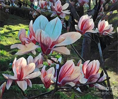Photograph - Magnolias In Shade - Central Park In Spring by Miriam Danar