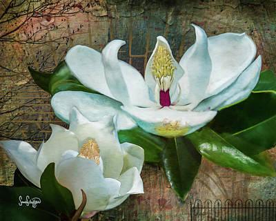 Digital Art - Magnolias by Sandra Schiffner