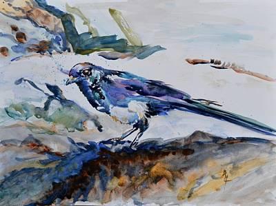 Magpie On The Coast Art Print
