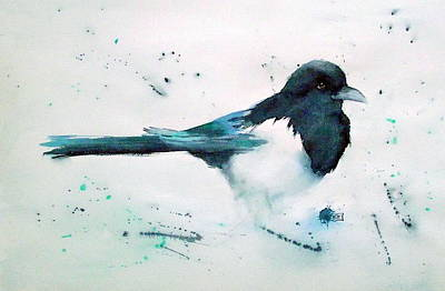 Painting - Magpie by Ruth Trinczek