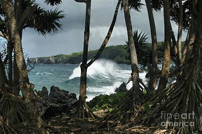 Mahama Lauhala Keanae Peninsula Maui Hawaii Art Print by Sharon Mau