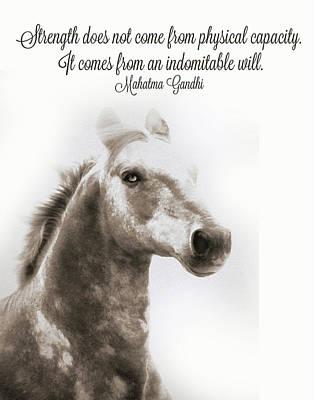 Mahatma Gandhi Photograph - Mahatma Gandhi Quite Artwork, Horse Quotes by Stephanie Laird